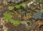 Stronghold Kingdoms screenshot 6