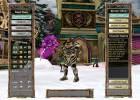 Knight Online World screenshot 1