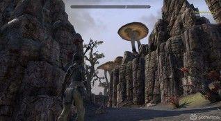 Elder Scrolls Online screenshot (4)