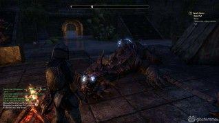 Elder Scrolls Online screenshots (53)
