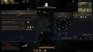 Black Desert screenshots (18)